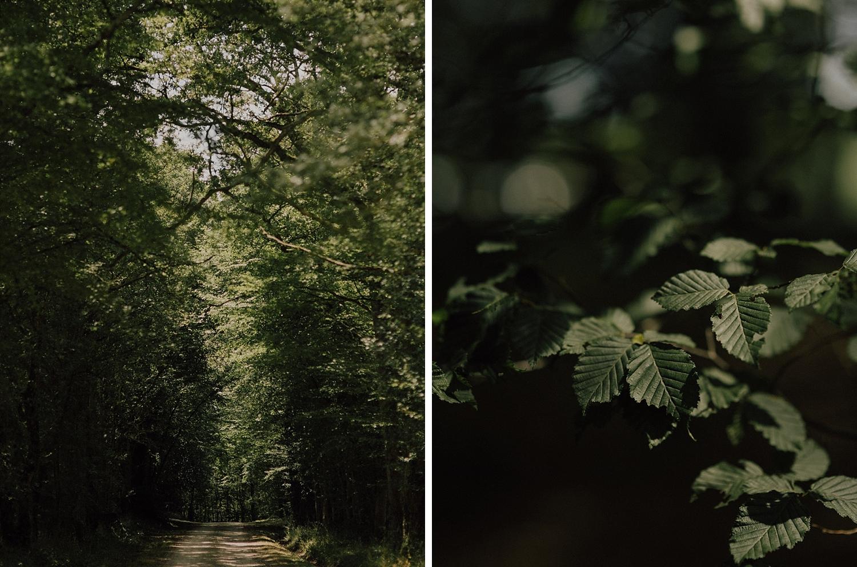 capyture-photographe-alsace-haut-rhin_0304