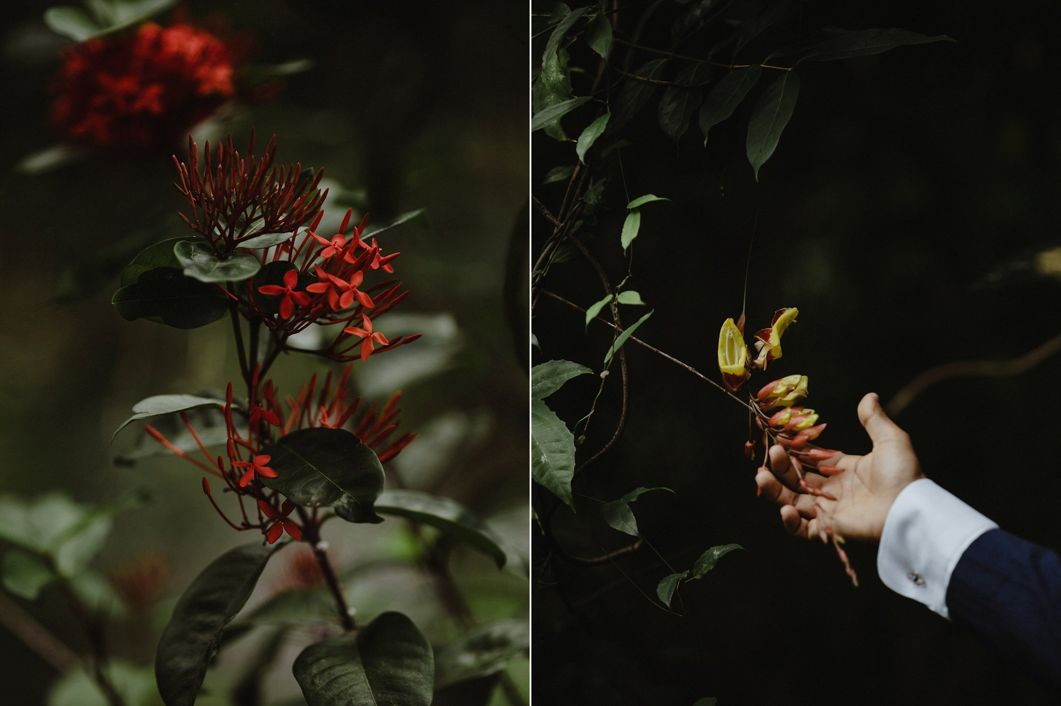 capyture-wedding-photographer-destination-nature_0809