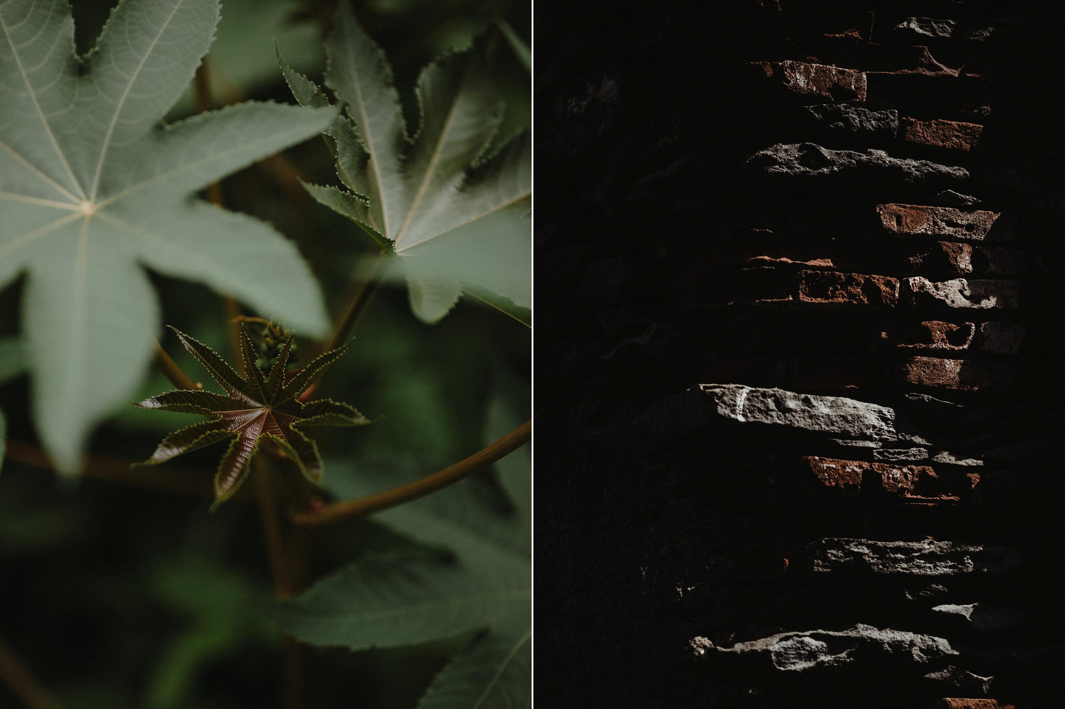 capyture-wedding-photographer-destination-nature_0810