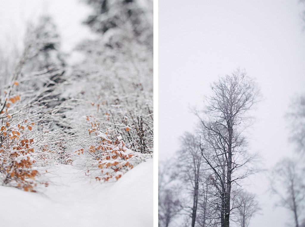 capyture-photographe-alsace-haut-rhin-7493