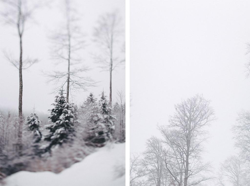 capyture-photographe-alsace-haut-rhin-9547