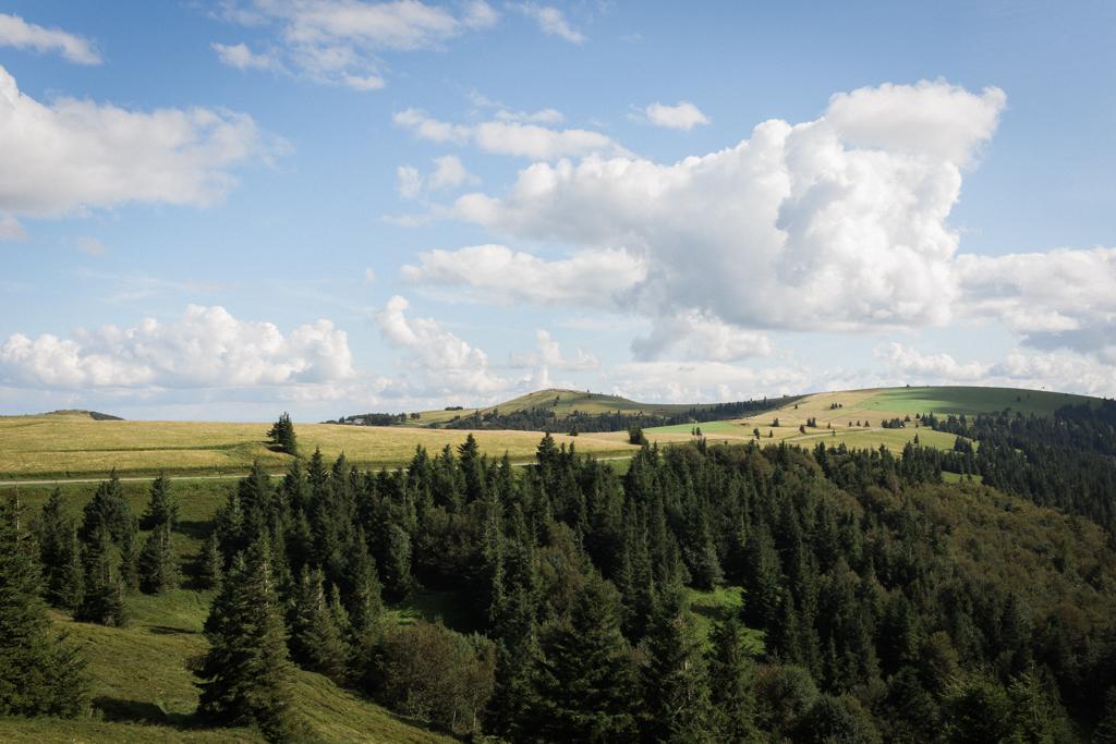 capyture-photographe-alsace-haut-rhin-5788