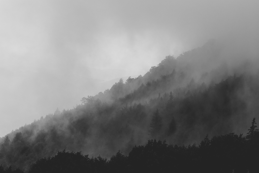 capyture-photographe-alsace-haut-rhin-1259