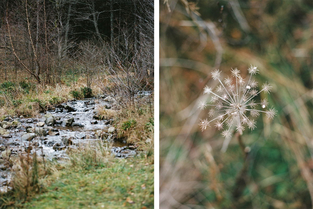 capyture-photographe-alsace-haut-rhin-44
