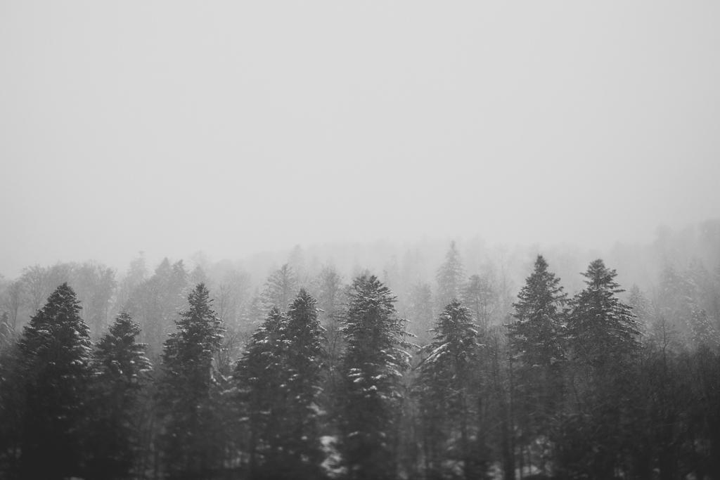 capyture-photographe-alsace-haut-rhin-8050