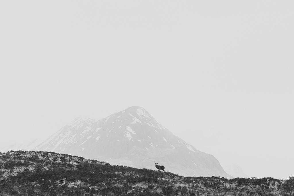 capyture-photographe-alsace-haut-rhin-8836