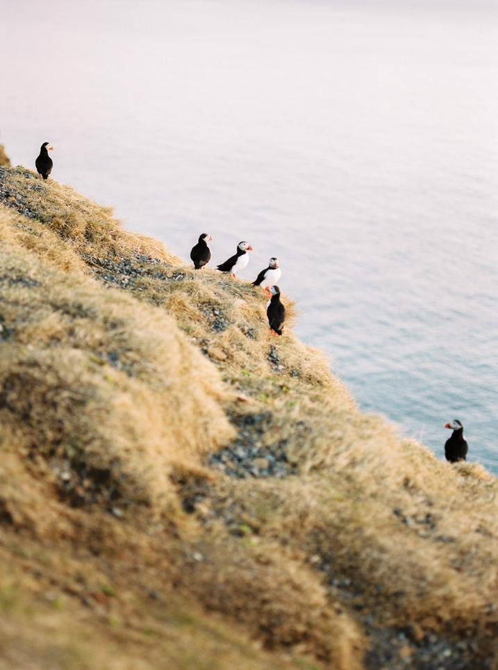 wedding-photographer-destination-iceland-107