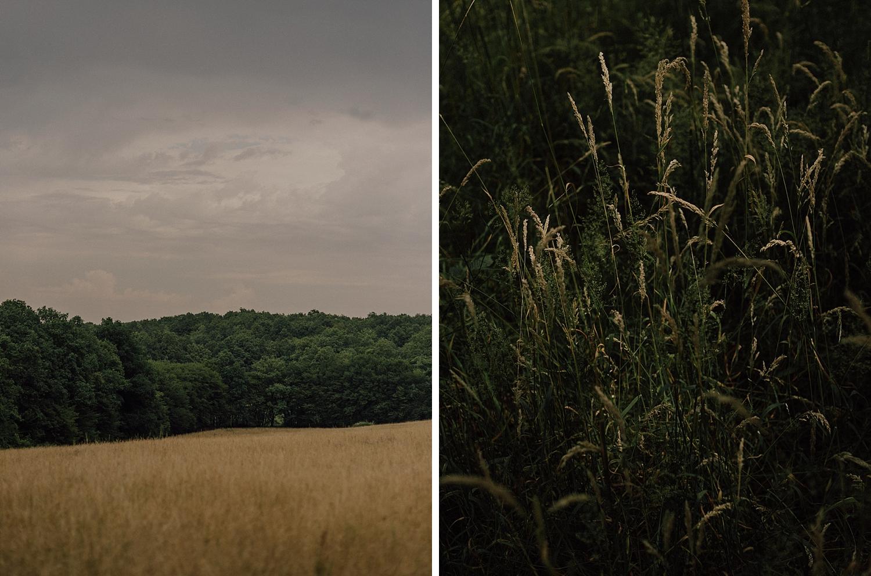 capyture-photographe-alsace-haut-rhin_0305