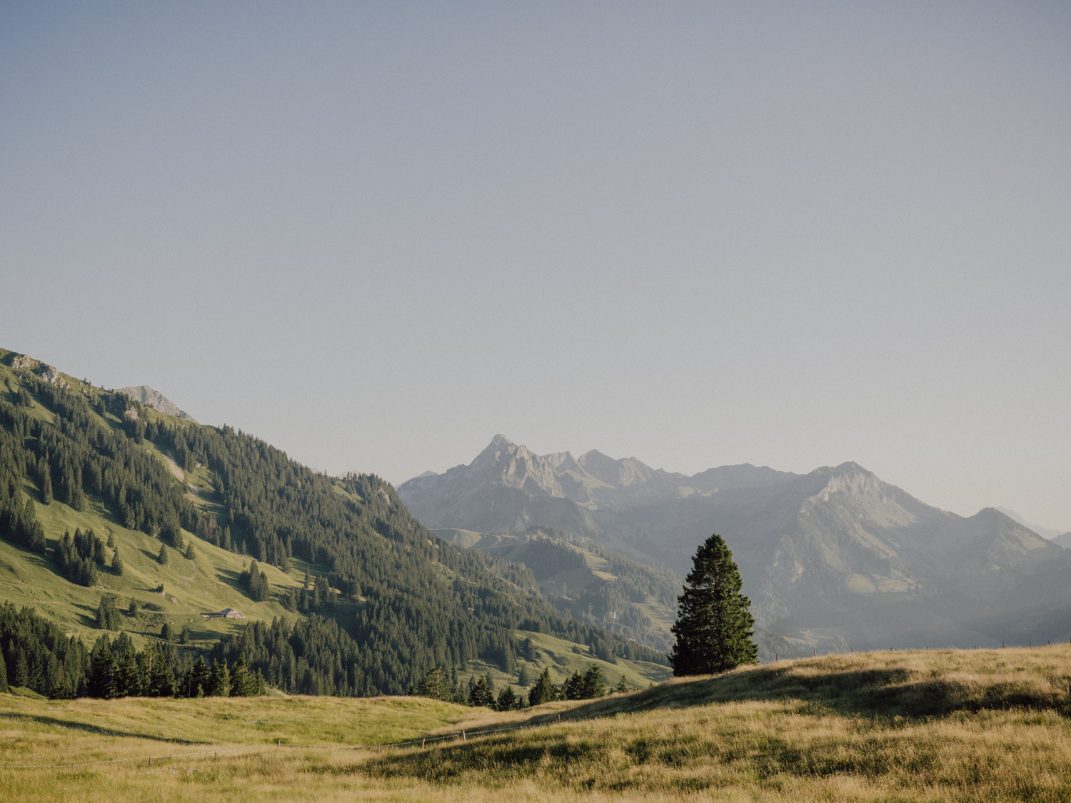 capyture-wedding-photographer-destination-elopement-switzerland-231