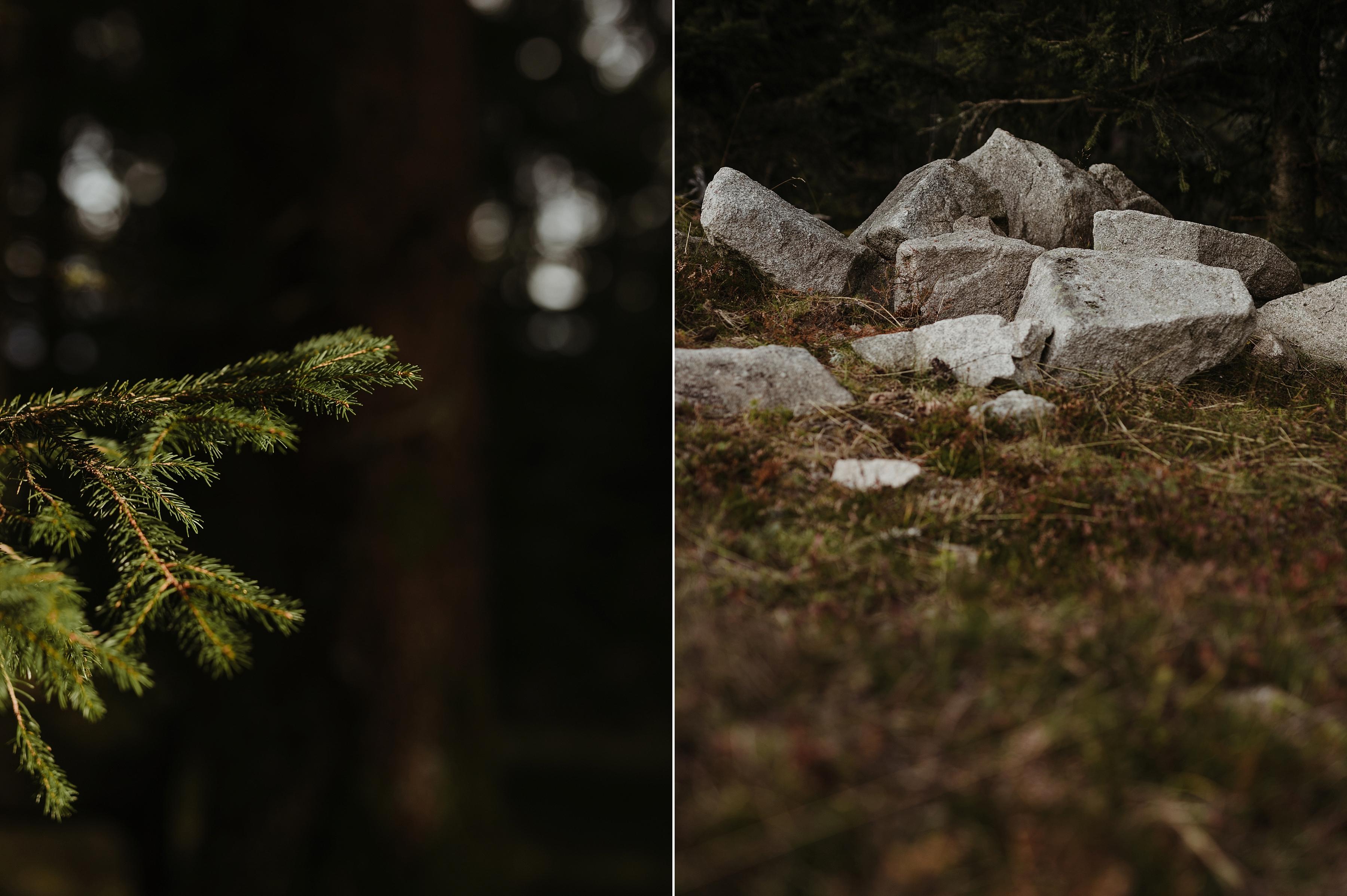 capyture-wedding-photographer-destination-nature_0761